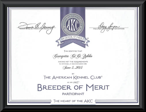 AKC Breeder of Merit Certificate